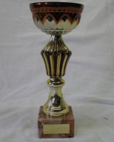 2005 FIM Rally Estonia - Interclub Award